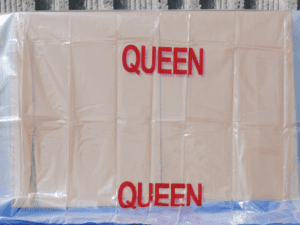 Queen Bed Mattress Protector